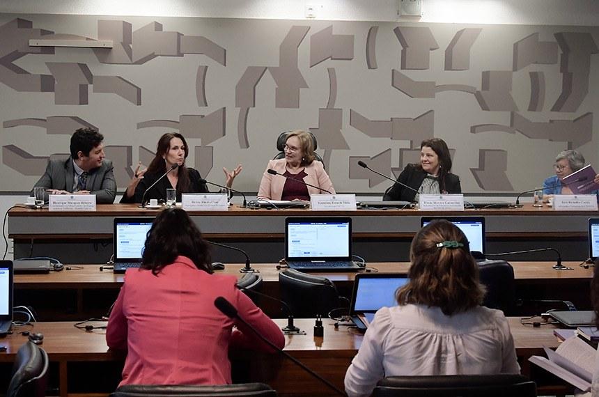 Comissão Mista da Mulher lança publicação '12 anos da Lei Maria da Penha'